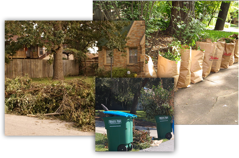 Yard Waste Removal - Yard Waste Removal Saratoga